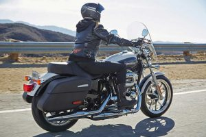 2014 Harley Davidson SuperLow 1200T Rear