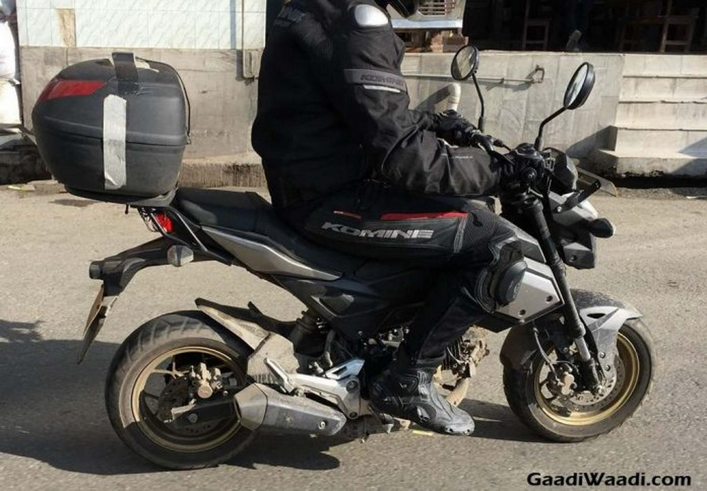 Honda Grom 125cc Side Profile Spotted