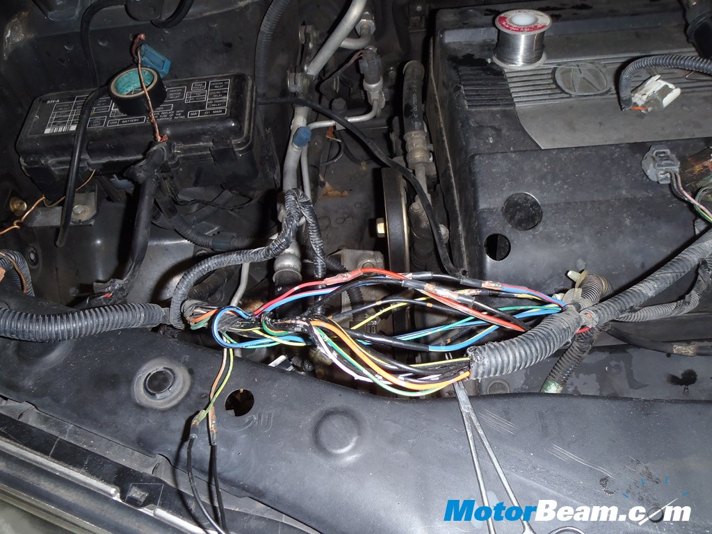 Rodents Eating Car Wires