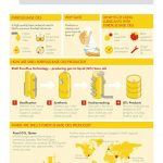 Shell PurePlus Technology Infographic