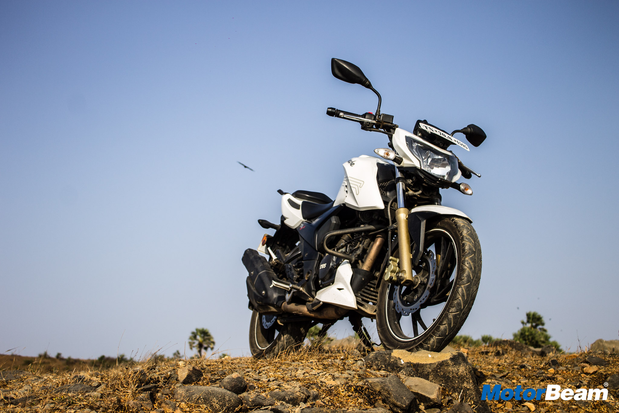 TVS Apache 200 Long Term Report